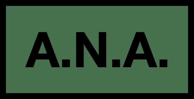 A.N.A. Studio